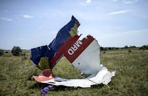 Debris at the crash site of the Malaysia Airlines flight…