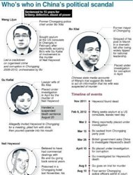 Who's who in China's political scandal surrounding the fall of Bo Xilai. China's state media say the Communist Party has put on a forceful display of unity by expelling Bo but web users denounced the case as a sign of deep-rooted corruption plaguing the ruling party