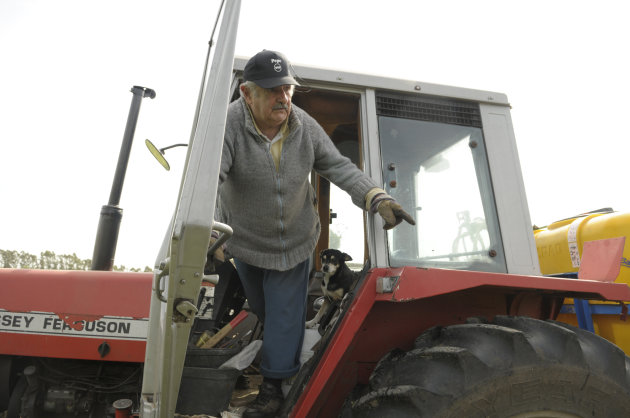 FILE - In this Oct. 25, 2009, file photo Uruguay's President Jose Mujica, 74, stands in a tractor on his flower farm on the outskirts of Montevideo, Uruguay, Sunday. Uruguayans used to call their country the Switzerland of Latin America, but its faded grey capital seems a bit more like Amsterdam now that its congress legalized abortion on Wednesday, Oct. 17, 2012, and is drawing up plans to sell government-grown marijuana. (AP Photo/Matilde Campodonico, file)