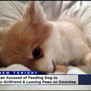 California Man Allegedly Cooked Ex-Girlfriend's Dog, Fed It To Her