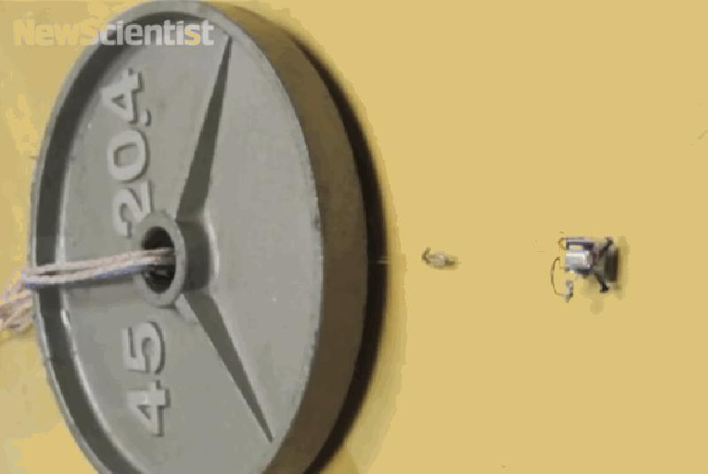 Tiny robots pull objects up to 2,000 times their own weight