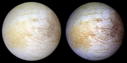 Ingredient for Life Common on Jupiter's Icy Moon Europa