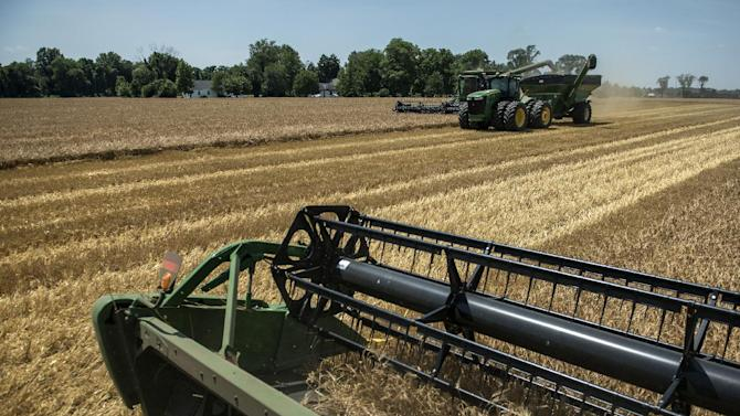 US corn and soybean crops could break records this year, but for farmers the bounty has a dark side: falling prices and a logistics nightmare getting crops to market