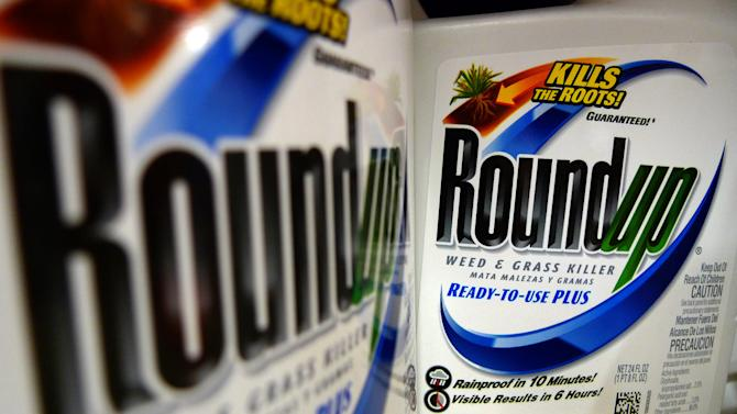 FILE - In this June 28, 2011 file photo, bottles of Roundup herbicide, a product of Monsanto, are displayed on a store shelf, in St. Louis. Monsanto Co. said Thursday, Jan. 5, 2012, its fiscal first-quarter earnings soared on strength of its seed business. The company also brightened its outlook for the full fiscal year. (AP Photo/Jeff Roberson, File)