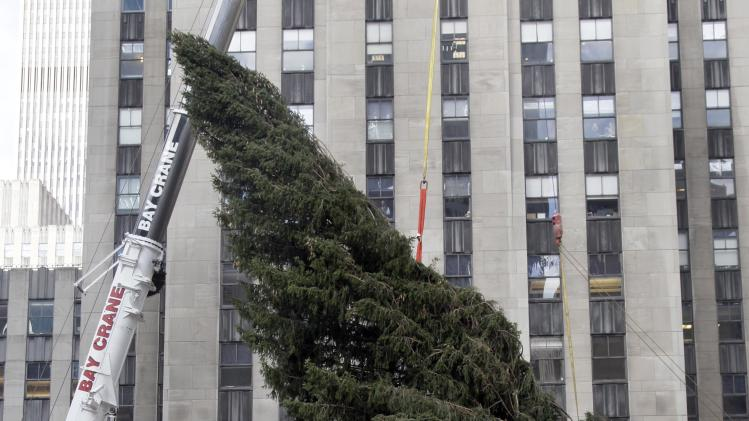 FILE - In this Wednesday, Nov. 14, 2012 file photo, the Rockefeller Center Christmas Tree is suspended by a crane in preparation to be raised at Rockefeller Center, in New York.  The 80-foot Norway spruce that made it through Superstorm Sandy will be lit Wednesday night, Nov. 28, 2012 at in an event scheduled to include performances from Rod Stewart, Cee Lo Green, Mariah Carey and Tony Bennett, and appearances from Billy Crystal and Bette Midler. (AP Photo/Richard Drew, File)
