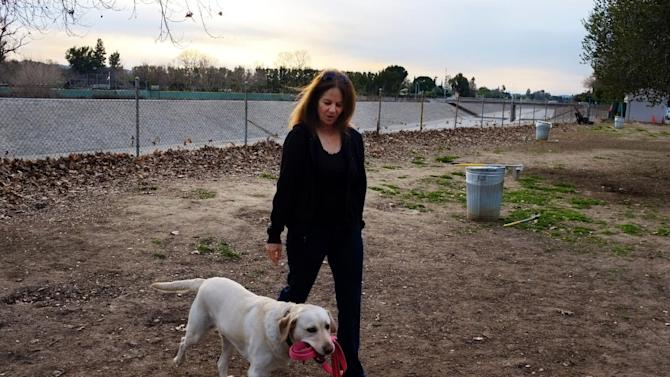 "In this Feb. 1, 2013 photo, pet owner, Linda Markley, walks with her Labrador retriever, Riley,  at the Sepulveda Basin Off-Leash Dog Park in Encino, Calif. Markley loves Riley for dozens of reasons, but specifically cited the dog's intelligence. Besides single words like ""keys,"" ""shoes,"" ""park,"" and ""shake,"" Riley understands phrases like ""go to Ryan's room,"" ""go to Jack's house,"" and ""let's go for a hike,"" she said. (AP Photo/Richard Vogel)"