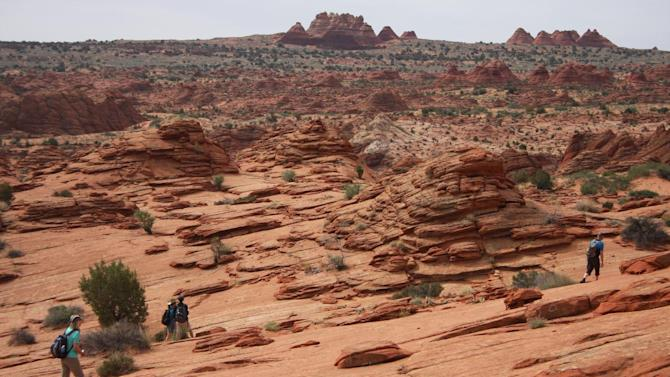 This May 28, 2013 photo shows hikers walking on rocky terrain for a 3-mile trip to The Wave rock formation in the Vermilion Cliffs National Monument. People who make the hike are advised to bring at least a gallon of water for the desert backcountry journey that begins in southern Utah and crosses over the border into Arizona. (AP Photo/Brian Witte)