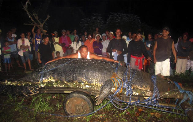 FILE - In this Sunday, Sept. 4, 2011 file photo, Bunawan Mayor Edwin Cox Elorde pretends to measure a huge crocodile which was captured by residents and crocodile farm staff along a creek in Bunawan i