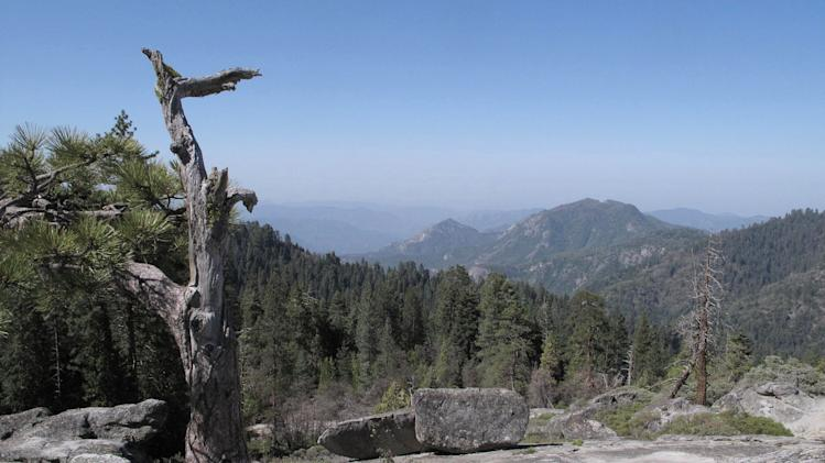 In this May 11, 2012 photo, the view from Beetle Rock in Sequoia National Park, Calif., is seen. A big city problem has settled in a big way in Sequoia Kings Canyon National Park, home of the giant Sequoias. Smog from the neighboring Central Valley is making it tougher for seedlings from the giants to take hold, and the needles of surrounding Jeffrey and Ponderosa pines are yellowing. (AP Photo/Tracie Cone)