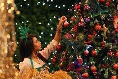 Brace for Europe's Christmas tree 'Black Friday'
