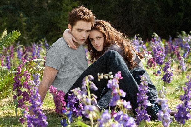 "This film image released by Summit Entertainment shows Robert Pattinson, left, and Kristen Stewart in a scene from ""The Twlight Saga: Breaking Dawn Part 2."" (AP Photo/Summit Entertainment, Andrew Cooper)"