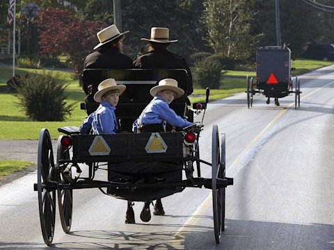 amish family buggy