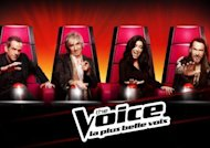 The Voice 2 : TF1 dévoile le premier talent
