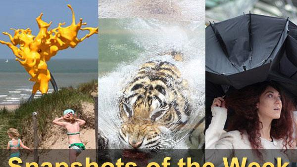 Our favorite snapshots of the week.