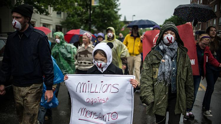 People carry signs during a protest against Monsanto in Montpelier, Vt. on Saturday, May 25, 2013. Marches and rallies against seed giant Monsanto were held across the U.S. and in dozens of other countries Saturday. Protesters say they want to call attention to the dangers posed by genetically modified food and the food giants that produce it. Monsanto Co., based in St. Louis, said Saturday its seeds improve agriculture by helping farmers produce more from their land while conserving resources such as water and energy. (AP Photo/Mark Collier)