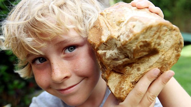 Boy Finds Ambergris, Valuable Fragrant Rock from Whale Poop, on Beach (ABC News)