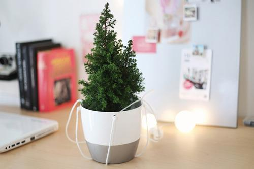 Uplifting Christmas Tree for Small Spaces