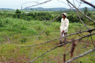 Cambodian community leader Teng Kao walks through a sugarcane field in Koh Kong province. An EU scheme to boost trade with developing nations is fuelling land grabs in Cambodia, activists say, with thousands evicted from their property to make way for a booming sugar industry