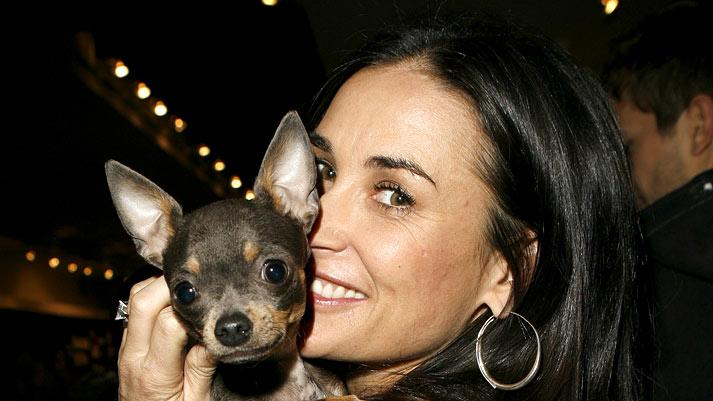 Demi Moore and dog Vida Blue