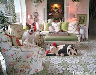 Adorable Dogs (and a Cute Cat) in Designer Rooms | Pets - Yahoo! Shine