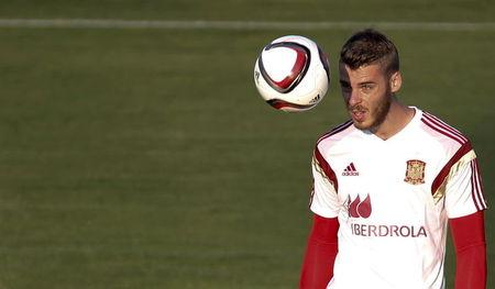 Spain's goalkeeper de Gea attends a training session at Soccer City grounds in Las Rozas, near Madrid