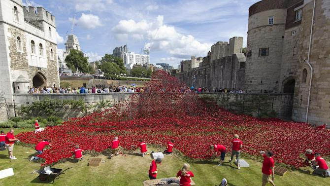 """Volunteers install porcelain poppies as part of the art installation """"Blood Swept Lands and Seas of Red"""" at the Tower of London."""