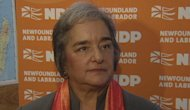 "NDP leader Lorraine Michael says the PCs are ""playing games"" regarding the house debate."