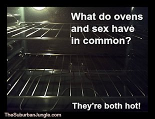 Sex or Oven Cleaning? Hmm...