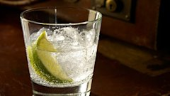 gty gin tonic kb 130621 wblog Gin and Tonics at Risk From Foreign Invader