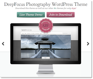 10 Best Wordpress Themes in 2013 for Photographers image Deepfocus5