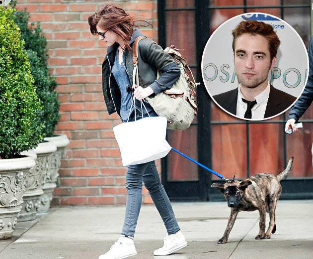 Kristen Stewart und Robert Pattinson streiten um Hund Bear (Bilder: Splash, Getty Images)