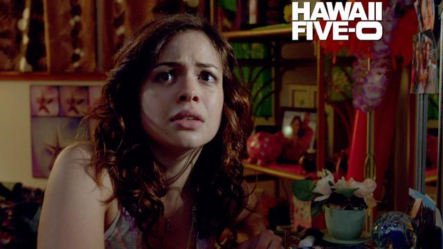 Hawaii Five-0 - Intruder Alert