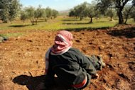 A Syrian villager takes cover in an olive grove after an area in Idlib, northwestern Syria came under fire by regime forces in February 2012. The source of the winter fuel that some Syrian farmers will use is not crude, but olives
