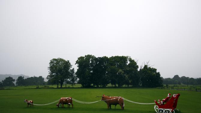 A sculpture featuring cows as reindeers attached to a sleigh with Santa Claus is seen in a paddock located on the outskirts of the southern New South Wales town of Berry on Christmas Day