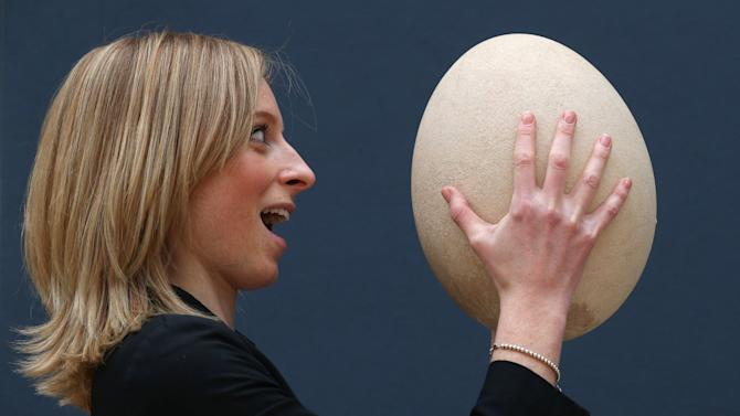 A Rare And Completely Fossilised Elephant Bird Egg Is Displayed Ahead Of Auction At Christie's