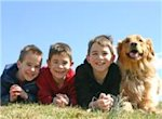 Pet dogs, brothers and sisters may help protect against egg allergy in children