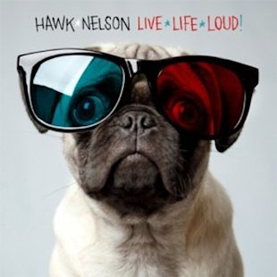 Ruff Rockers: 7 Awesome Album Covers Featuring Dogs