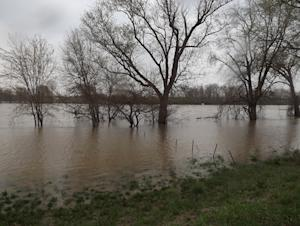 Spring Flooding in Tippecanoe County Reaches Near Record Levels