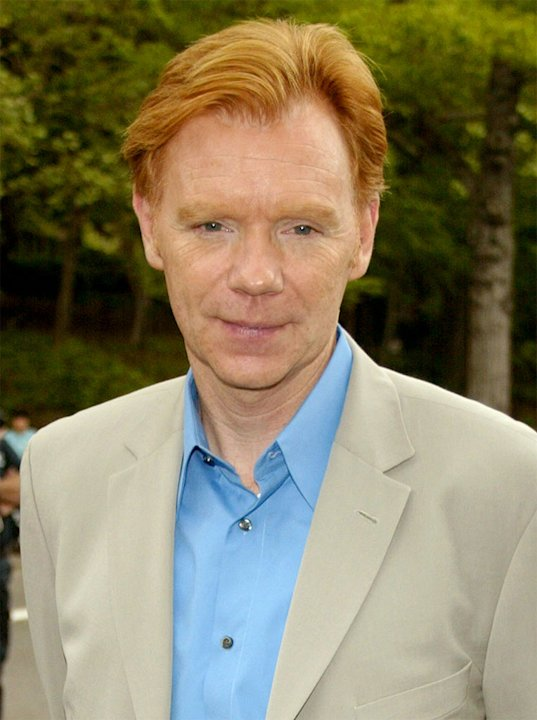 David Caruso at the 2003-2004 CBS Upfront - After Party on May 14, 2003