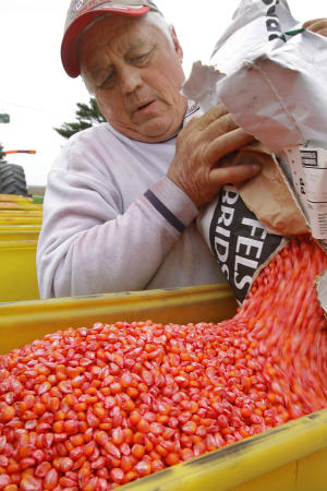 In this April 16, 2010 photo, central Illinois farmer Gary Niemeyer fills his planters with seed corn on his farm in Auburn, Ill. While most of the American economy has struggled the past few years companies with a hand in agriculture have enjoyed a good ride. High food prices that have pumped up farmer income have also improved the fortunes of companies like Deer & Company, ADM, Monsanto and Syngenta. (AP Photo/Seth Perlman)