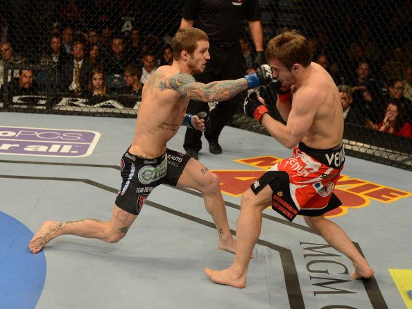 LAS VEGAS, NV - DECEMBER 29: (L-R) Eddie Wineland versus Brad Pickett during their bantamweight fight at UFC 155 on December 29, 2012 at MGM Grand Garden Arena in Las Vegas, Nevada. (Photo by Josh Hed
