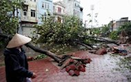 A resident of the nothern Vietnamese city of Nam Dinh looks at fallen trees after the passage of typhoon Son Tinh on October 29, 2012. Two people were killed and thousands of homes damaged as Vietnam&#39;s coast was lashed by Typhoon Son-Tinh, authorities said Monday, after the storm caused deadly landslides and floods in the Philippines