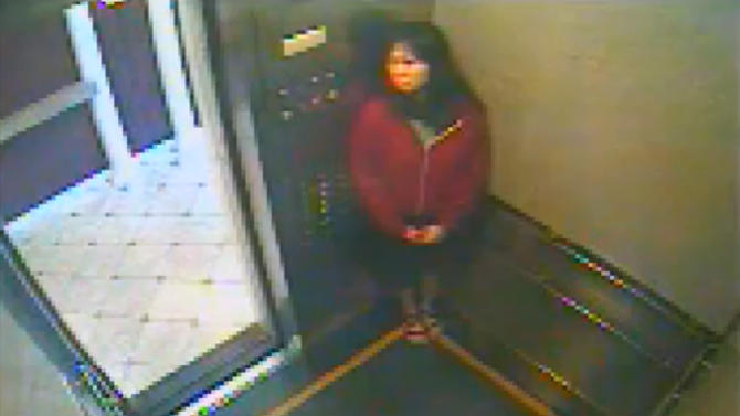 This still image taken from a security video was released on Feb. 13, 2013, by the Los Angeles Police Department in connection with the search for 21-year-old missing Canadian tourist Elisa Lam. In this image, a woman believed to be Lam appears to hide in an elevator in the Cecil Hotel in downtown Los Angeles on Thursday, Jan. 31, the last day she was seen alive. A maintenance worker at the hotel found Lam's body in a water cistern on the building's roof on Feb. 19, more than two weeks after she had gone missing. (AP Photo/Los Angeles Police Department)