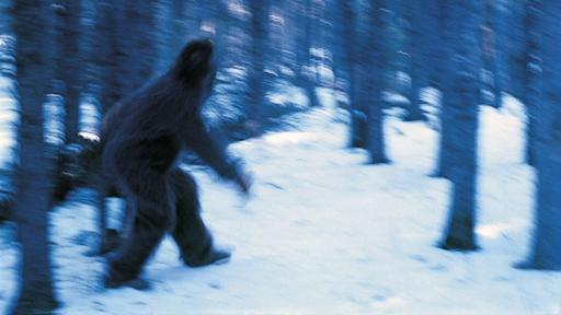 Geneticist Unravels Yeti's DNA