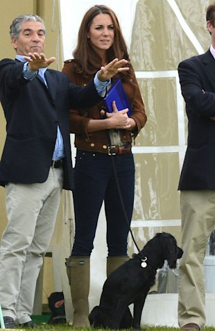 Kate Middleton And Prince William's Dog Lupo Sparks Increase In Dog Thefts