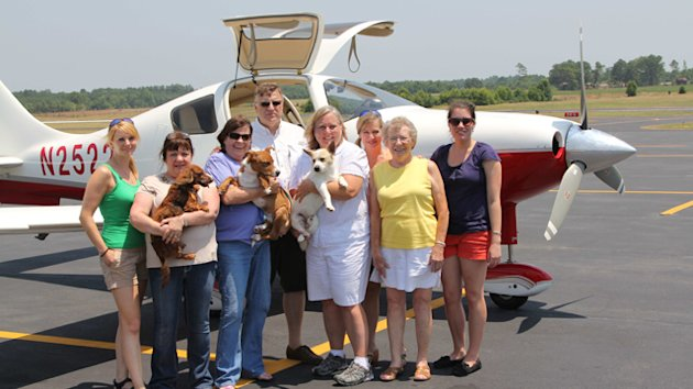 Volunteer Pilots Rescue Dogs in Danger (ABC News)