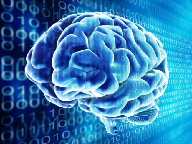 Google preparing its 'virtual brain' tech for use in apps