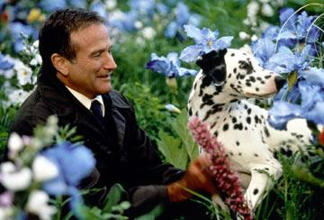 Robin Williams in Gramercy Pictures' What Dreams May Come