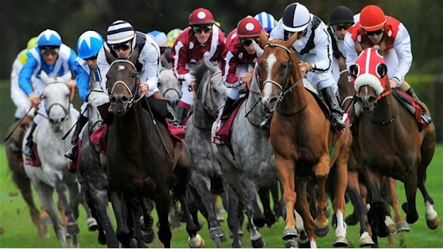 Horse Racing - Racing results: Tuesday 19 February