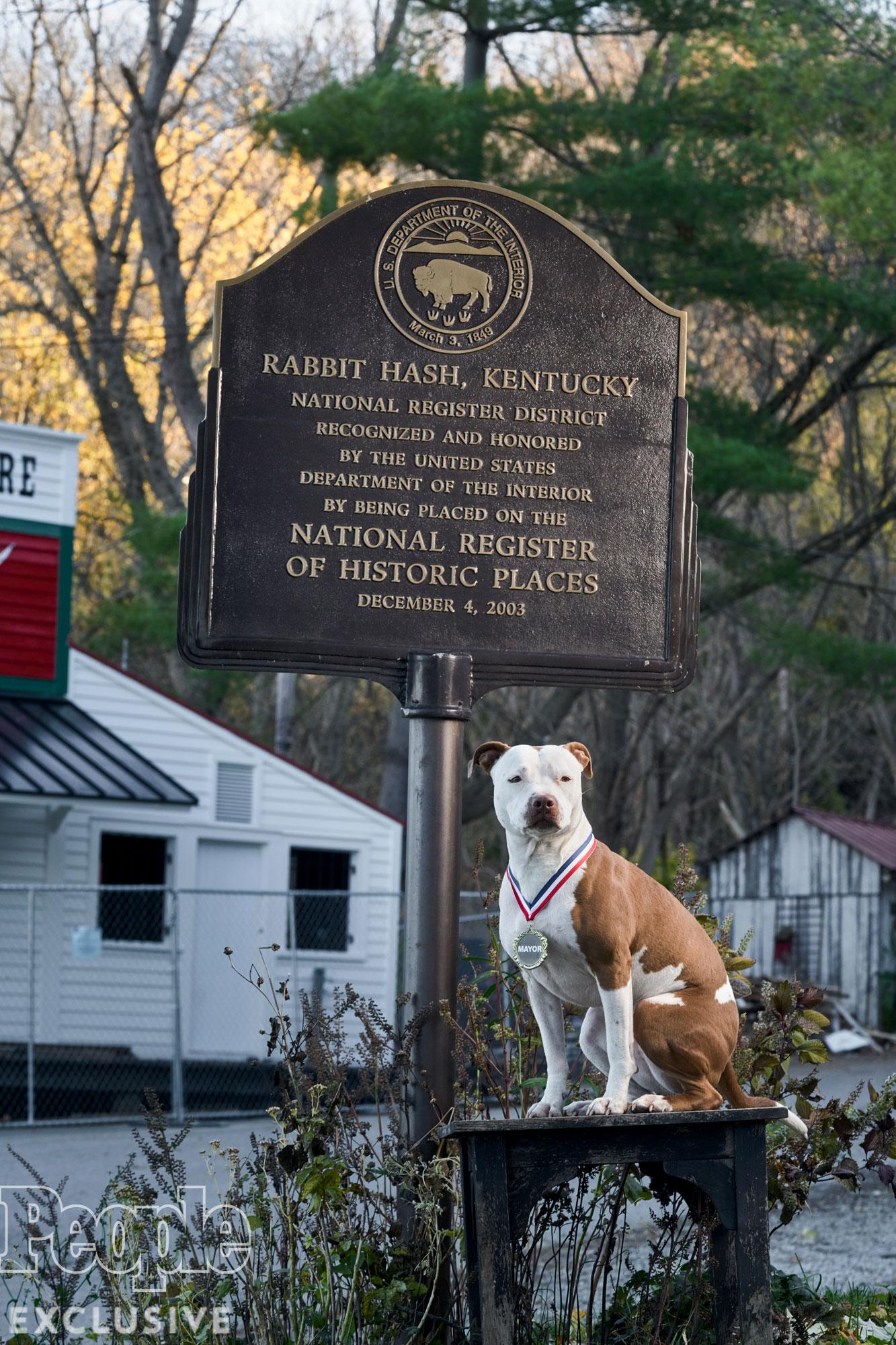 PHOTOS: Kentucky's Cutest Canine Mayor Shows PEOPLE Around Her Town